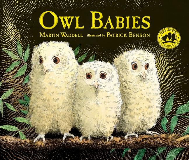 STEAM Saturdays - Channel 5 PBS presents Owl Babies