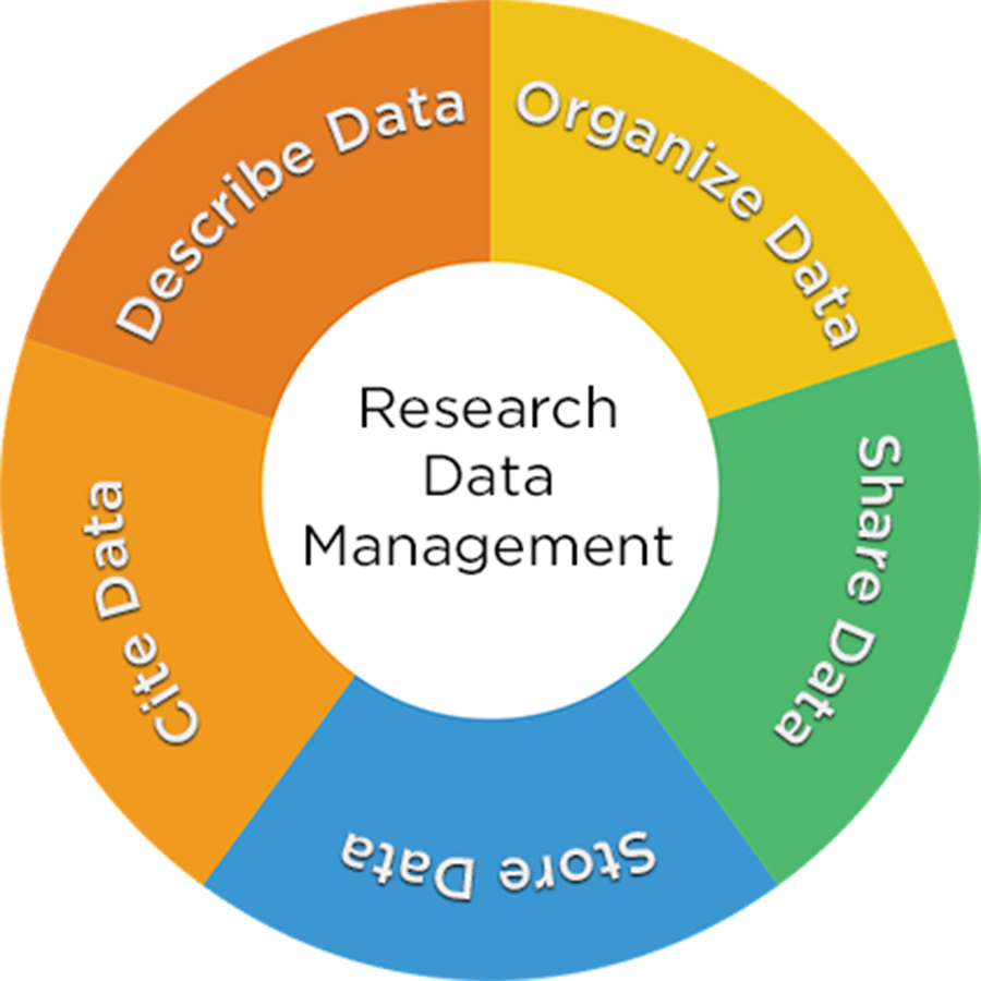 Data Management Tools