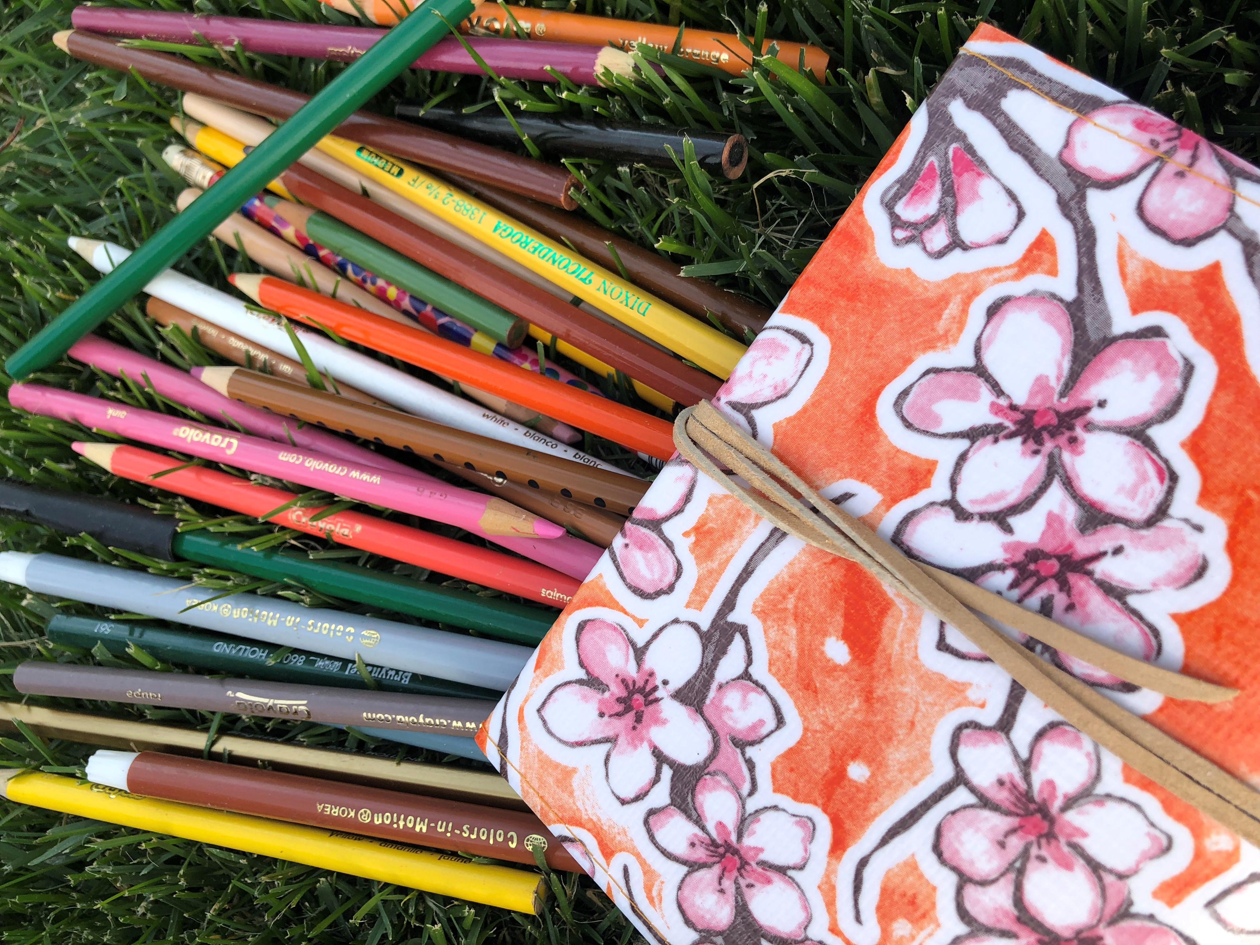 Pollinator Appreciation Month: Pollinator Field Journals