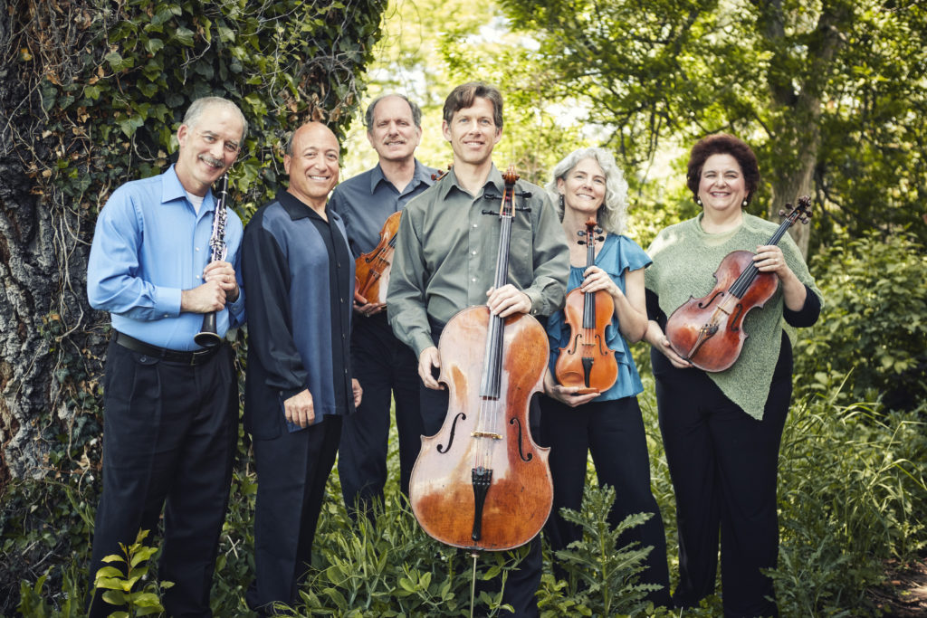 """The Library Concert Series Presents: Colorado Chamber Players """"Incessant Hum: Beethoven 2020"""""""