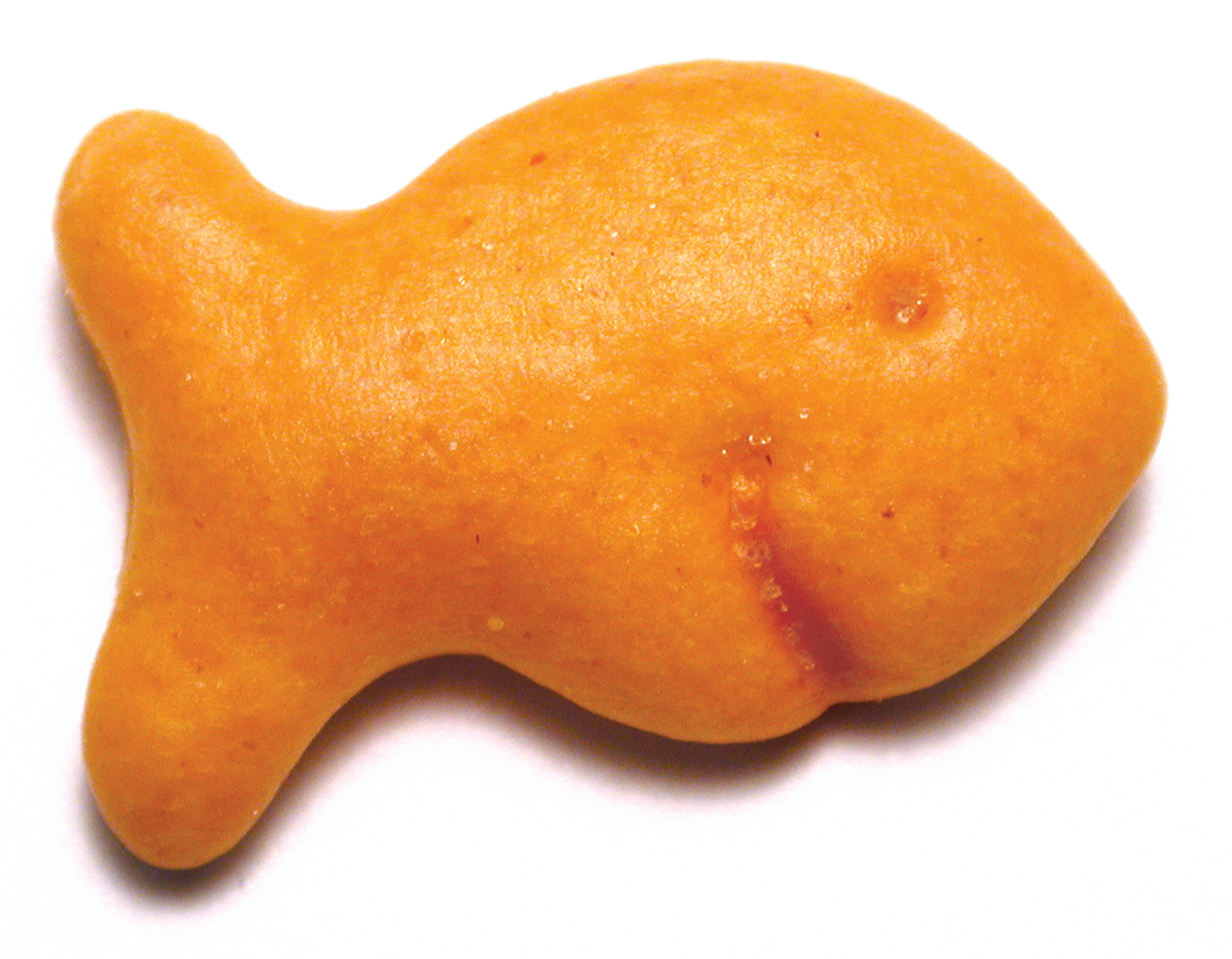 First Friday Food Lab: Goldfish Crackers