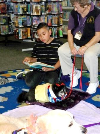 Read to a Dog at Northwest Library/ Leale al perrito en la biblioteca Northwest!