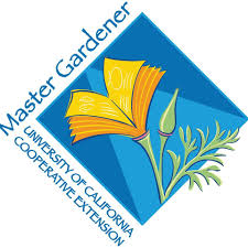 Master Gardeners Growing Perennial Vegetables and Small Fruits