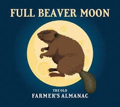 The Library After Dark: Stargazing Party & The Beaver Moon - Ages 10-Adult