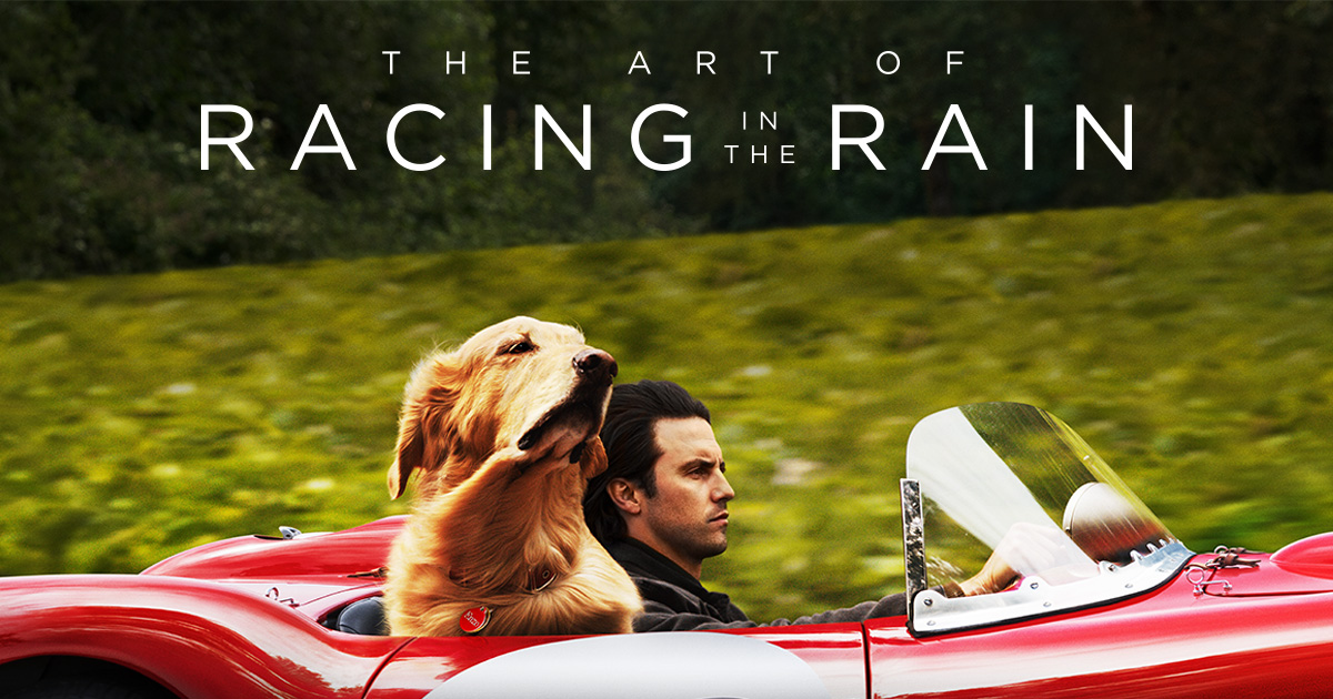 Adult Movie: The Art of Racing in the Rain