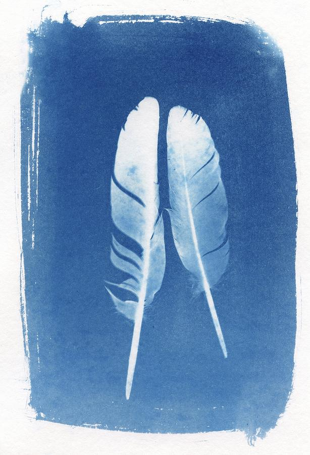 Learn How to Create Cyanotypes: Photography Without a Camera