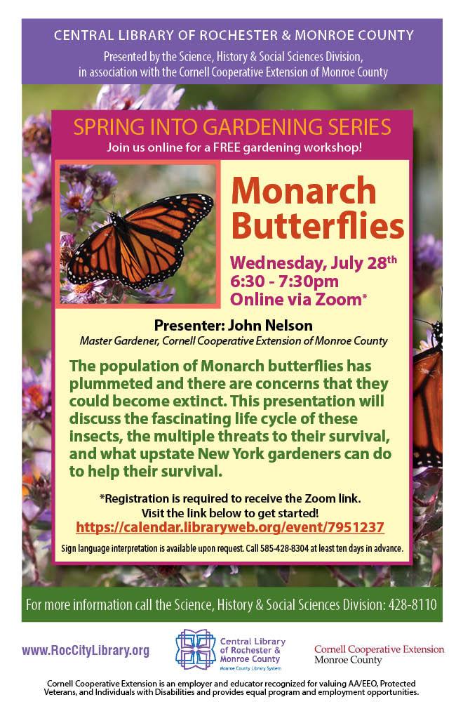 Spring Into Gardening: Monarch Butterflies