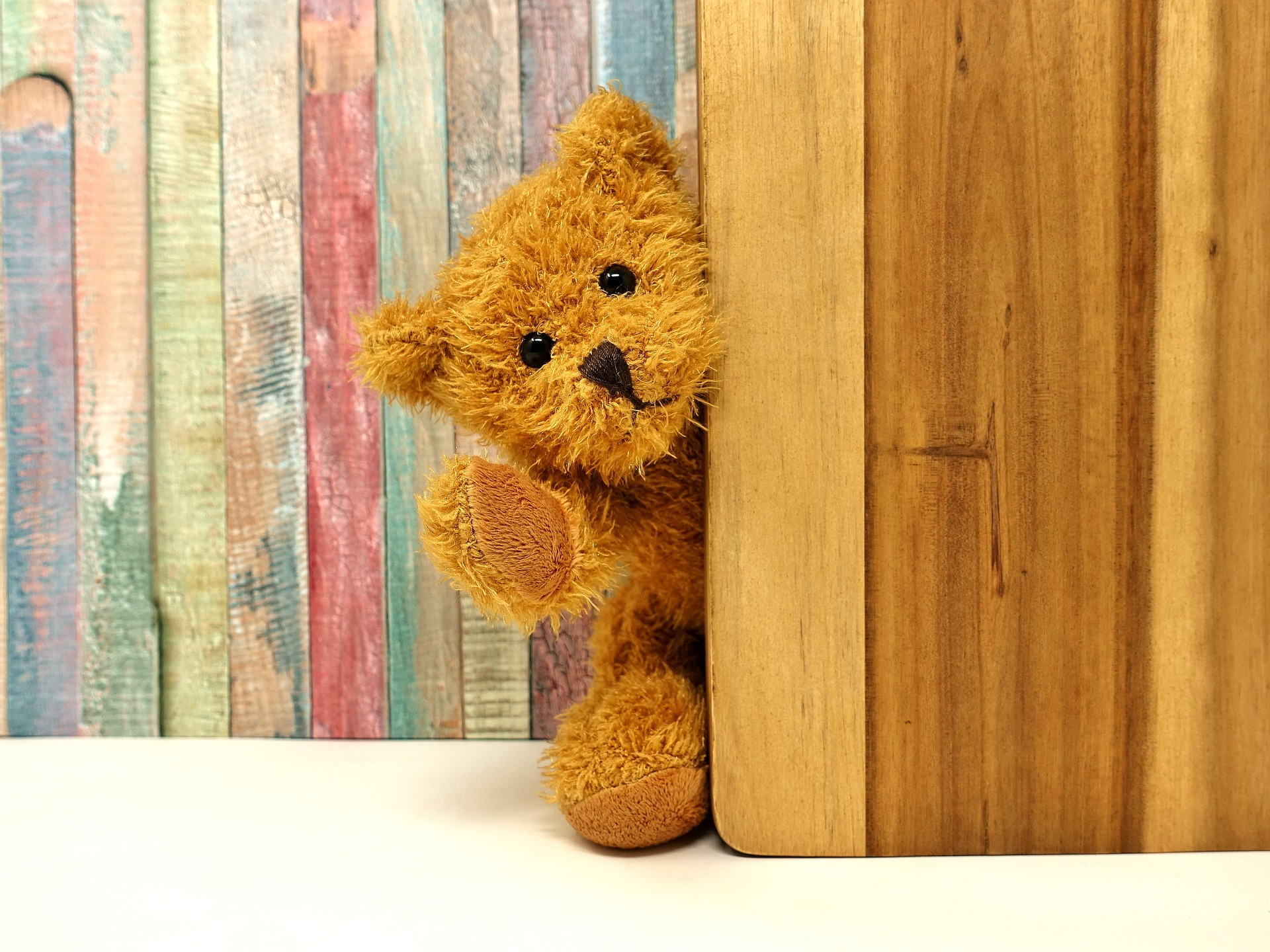 Teddy Bear Picnic (virtual)