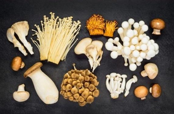 The Basics for Growing Edible Mushrooms Outdoors (virtual)