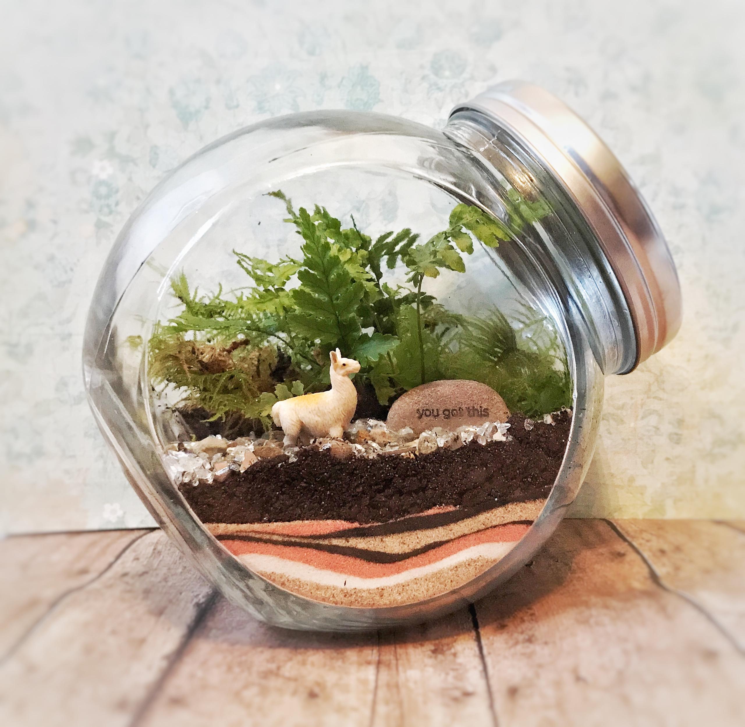 Wednesday Crafternoon: Terrariums
