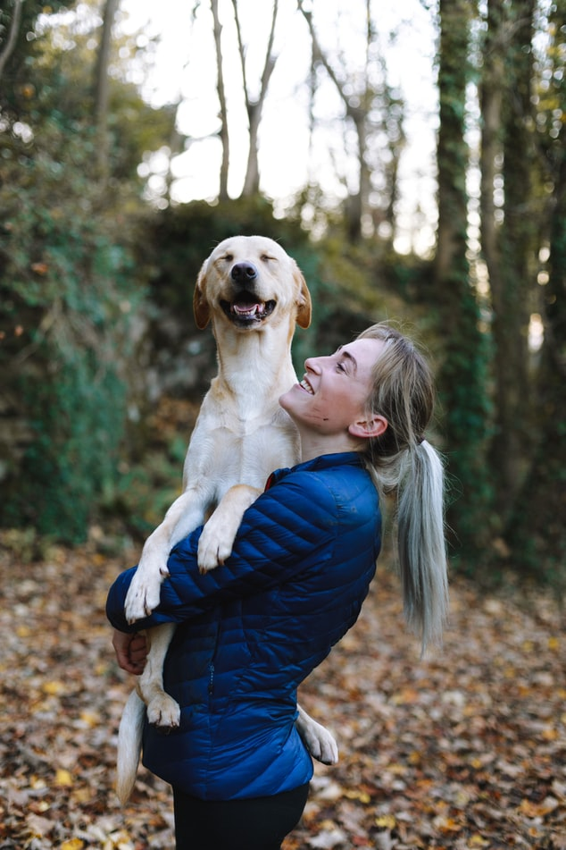Zoom Program: Top 10 Tips for a Happy Dog