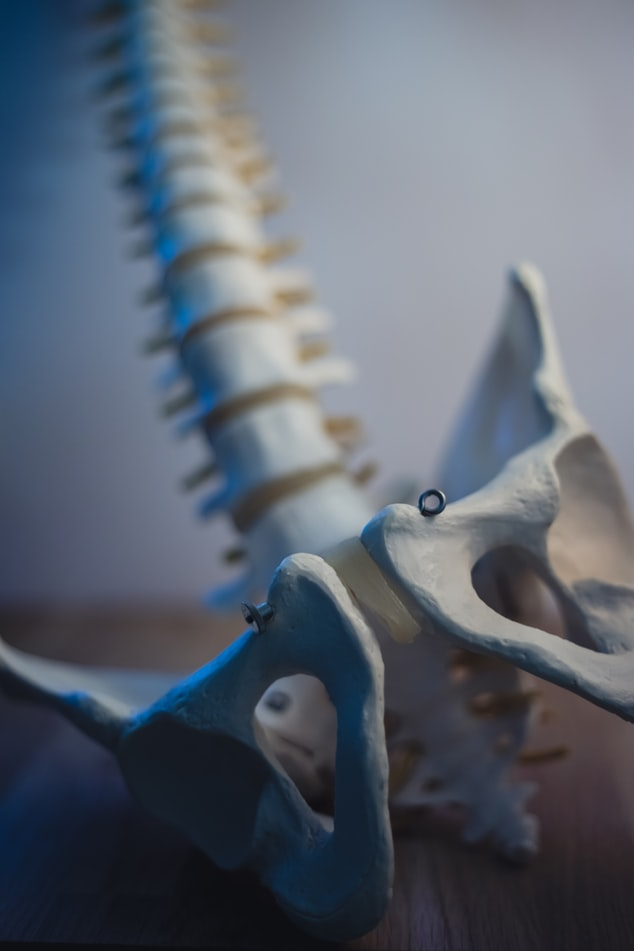 Chronic Pelvic Pain Explained: Musculoskeletal Pain Zoom Program