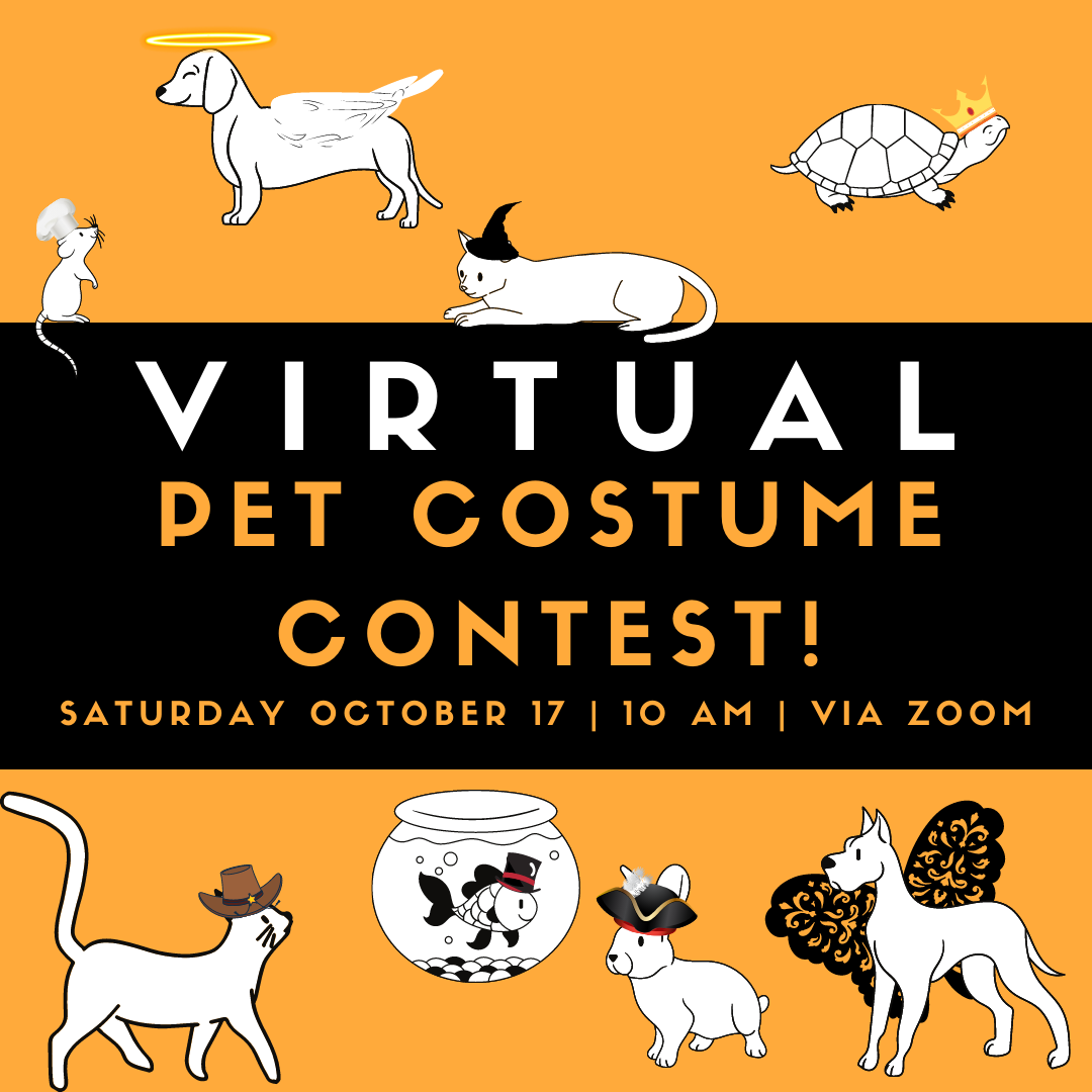 Virtual Pet Costume Contest!
