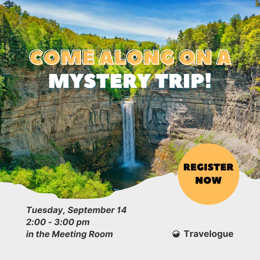 Come Along on a Mystery Trip!