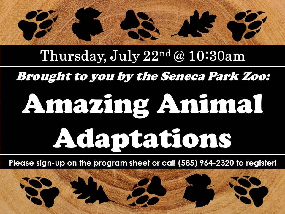Seneca Park Zoo Amazing Adaptations