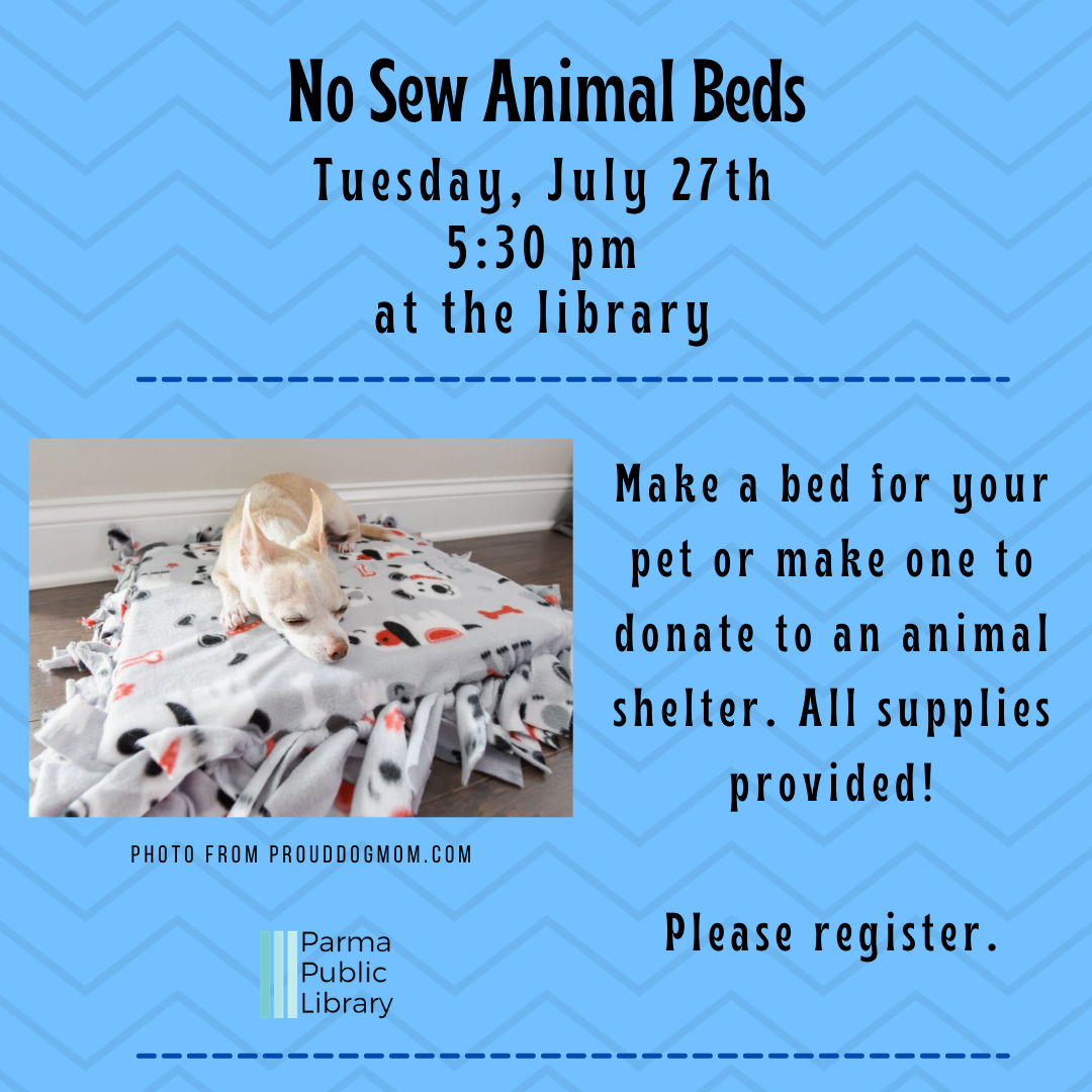 No-Sew Animal Beds: Session 2- IN PERSON