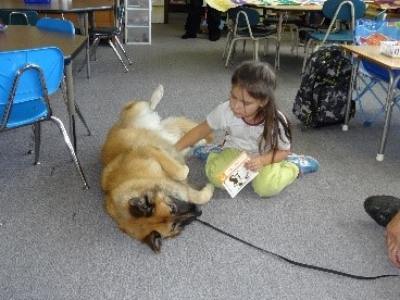 Therapy Dog Reading Buddy