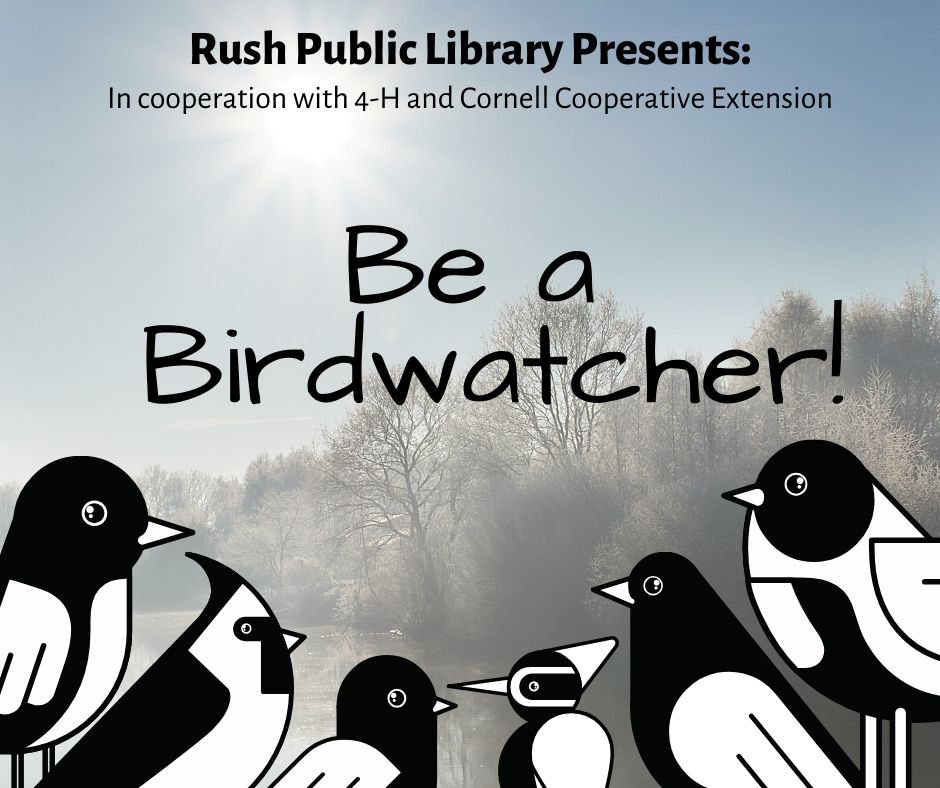 Be a Birdwatcher!