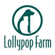 Lollypop Farm's Bow Wow Academy