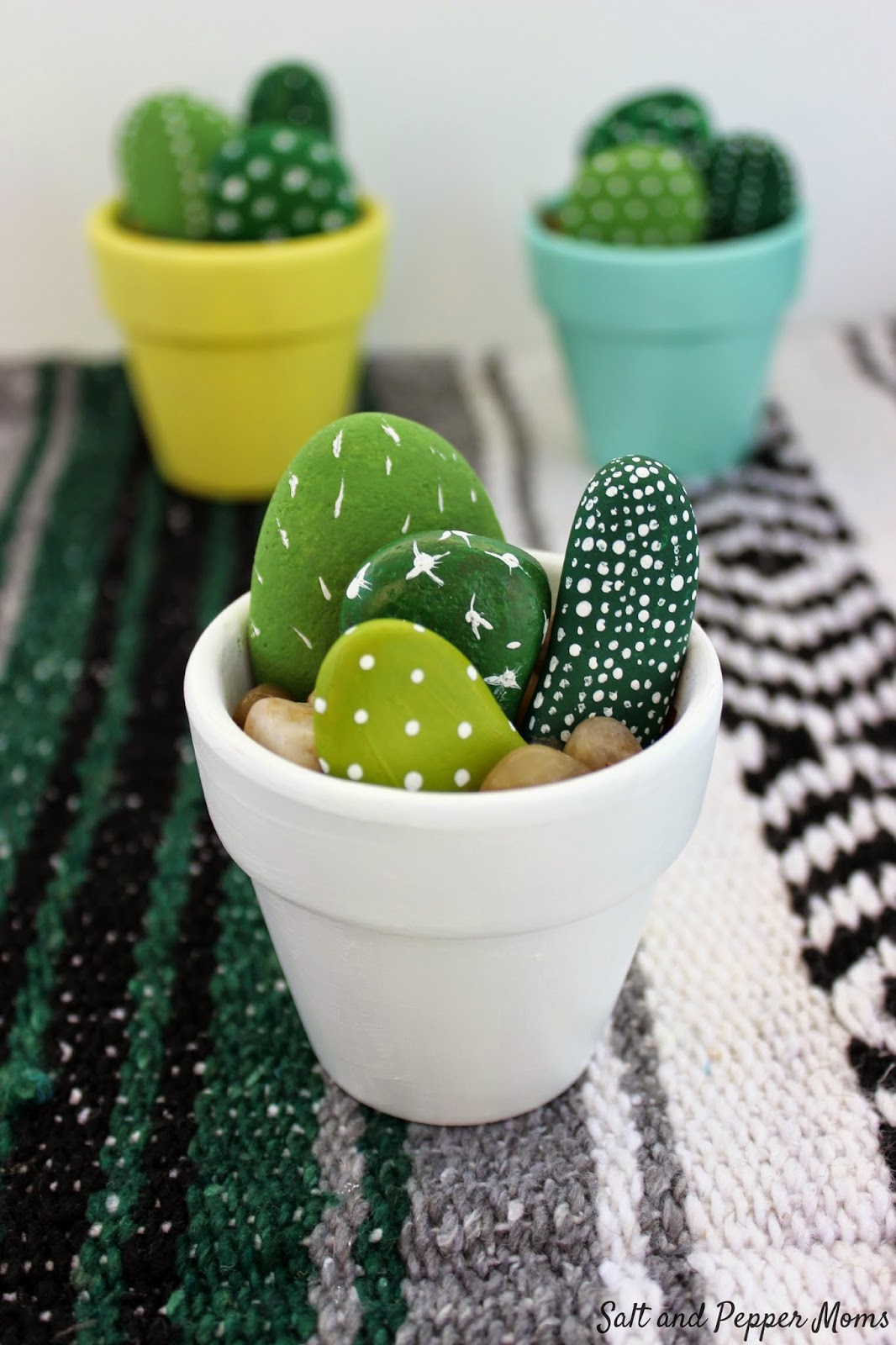 Cactus Rock Garden Adult Craft Workshop