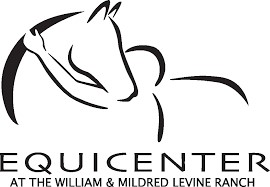 All About Horses: EquiCenter Experience Especially for Kids