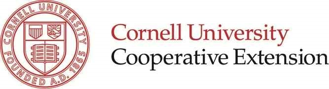 Attracting Pollinators to Your Garden: An Online Program with Cornell Cooperative Extension