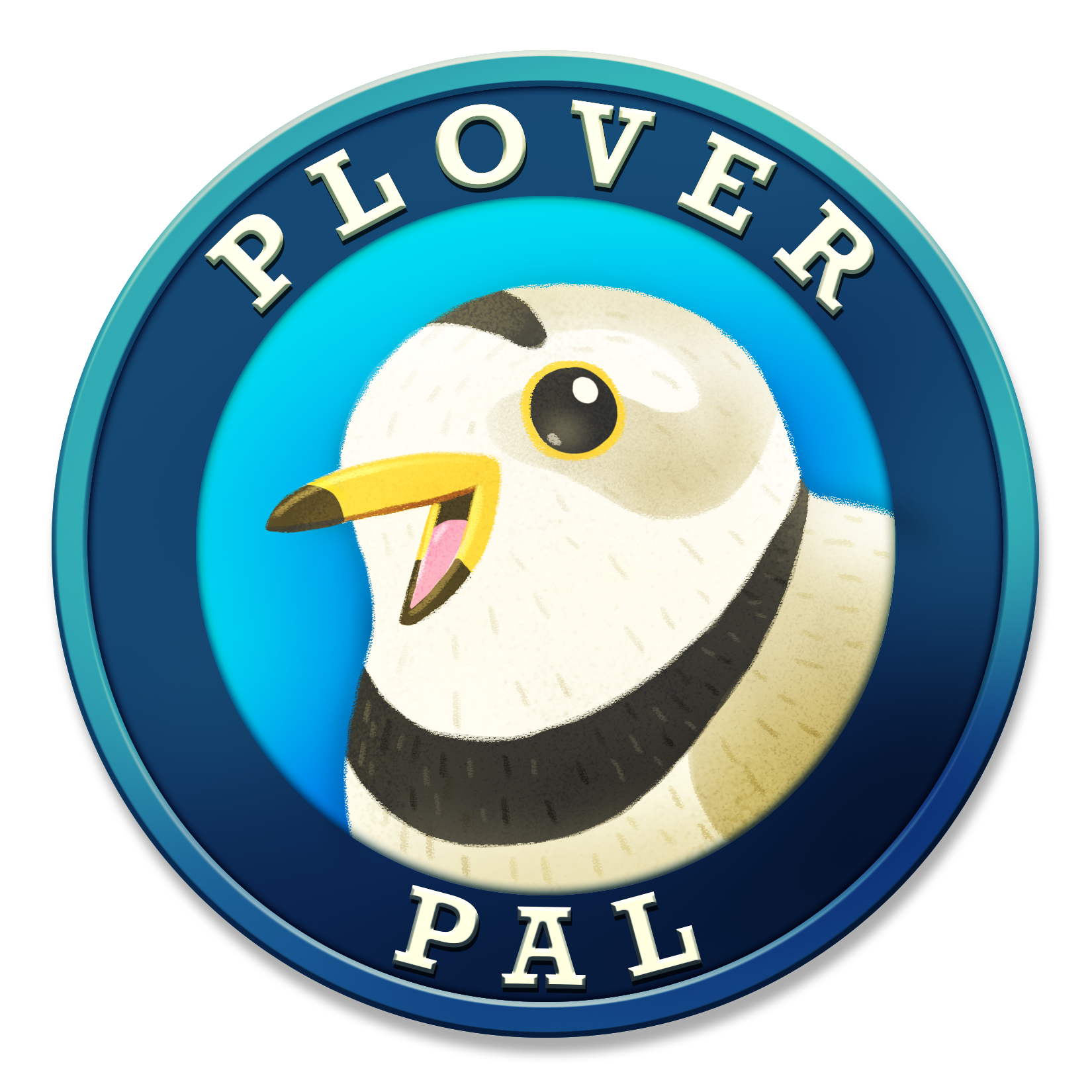 Virtual Piping Plover Research and Conservation in the Great Lakes Region