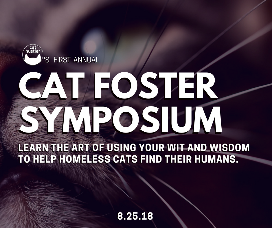 Cat Foster Symposium