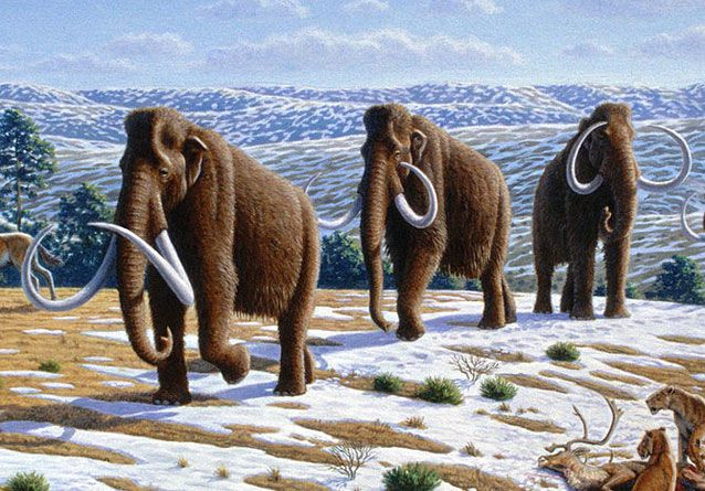 Adventures in History: The Ice Age
