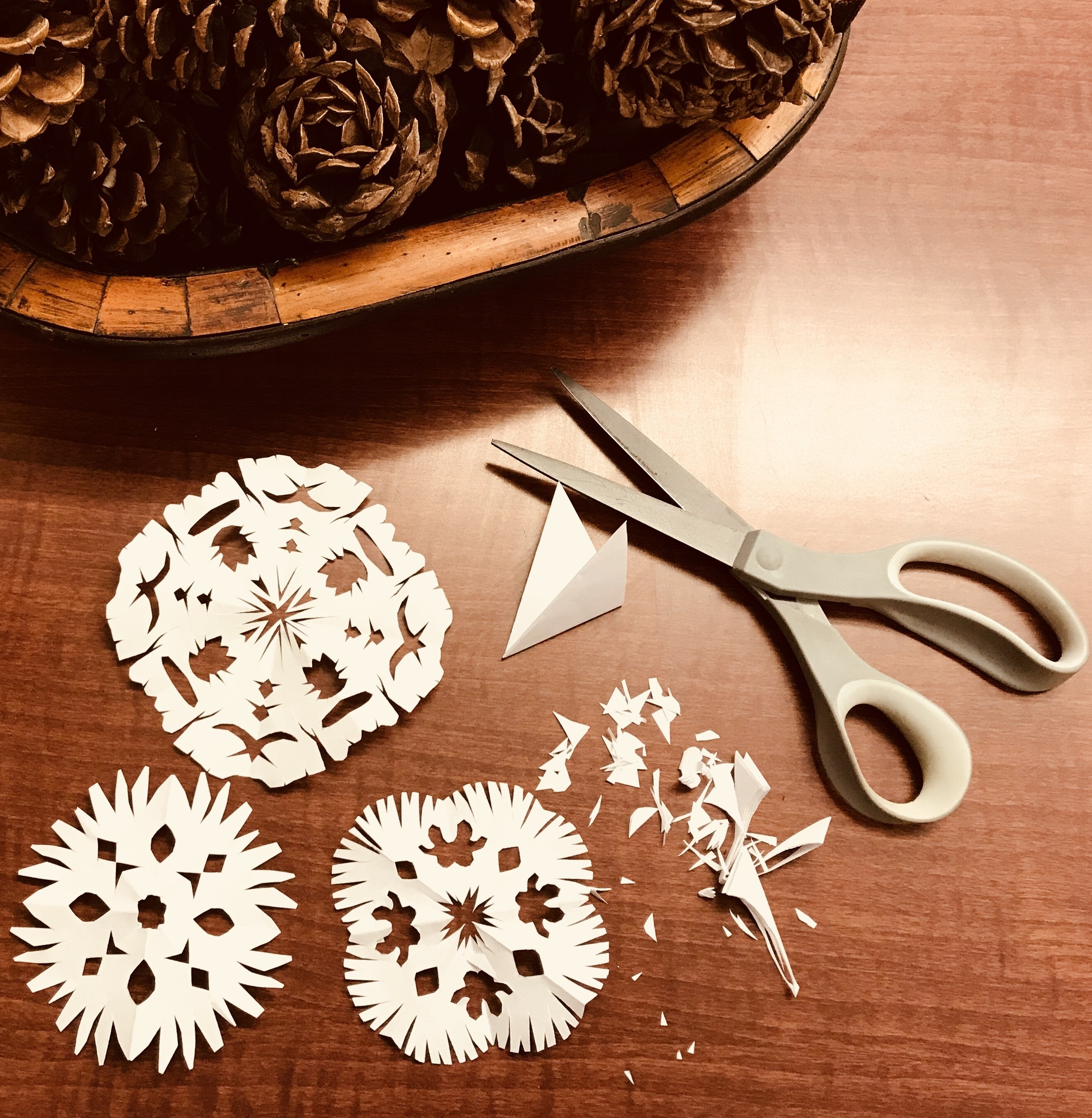 Make Your Own Snowflakes!