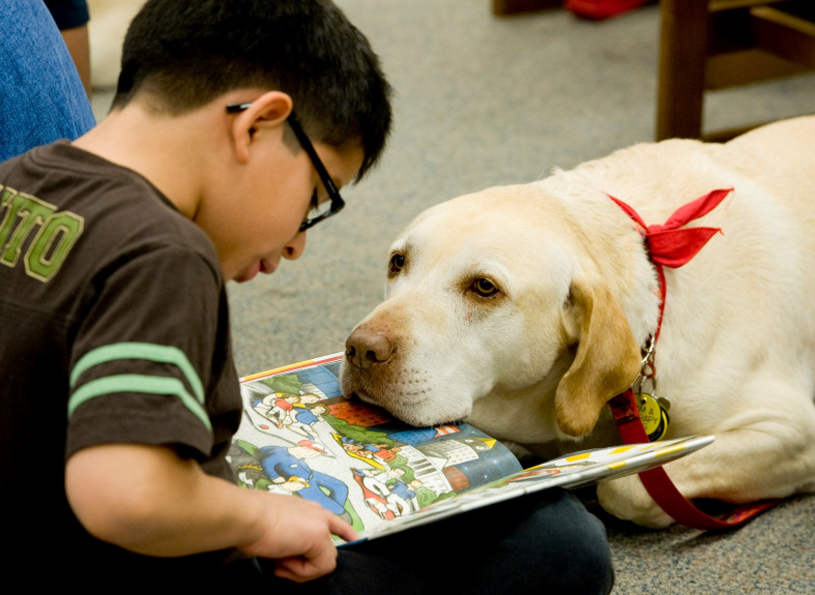 Read to a Dog - Woof, and Paws