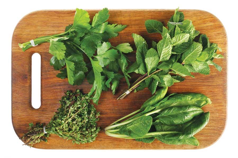 Culinary Herbs Workshop