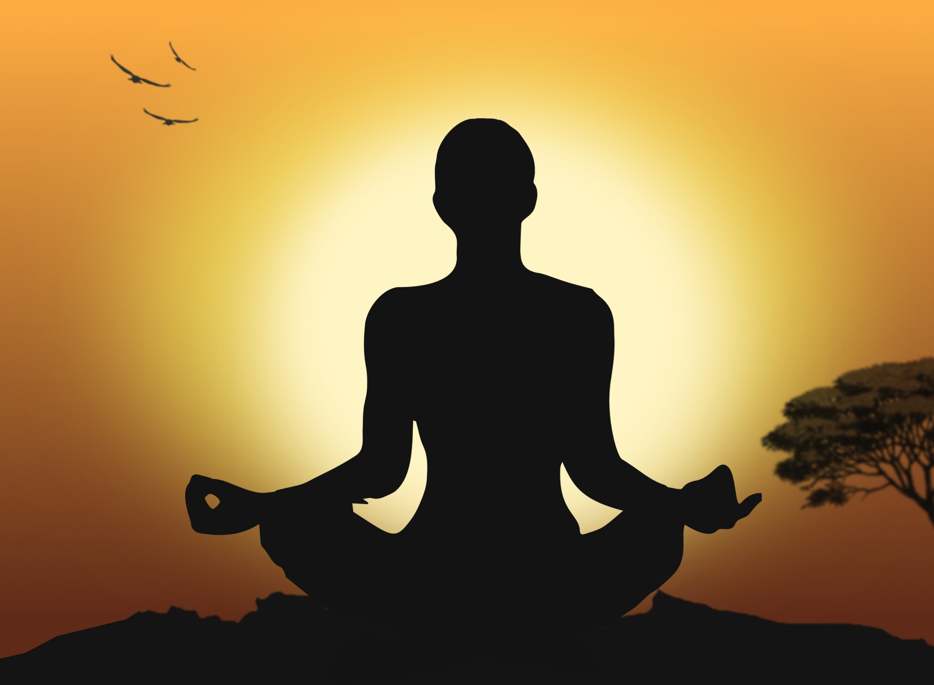 Meditation & Inspiration: Seasons of the Heart (Video on Demand)