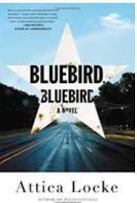 Online Mystery Book Club Discussion  -- Bluebird, Bluebird -- from Patrick Henry Library