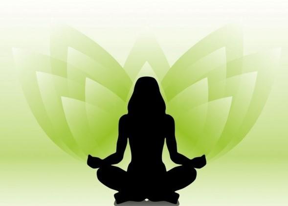 Yoga Wellness: Movement, Breath, Meditation
