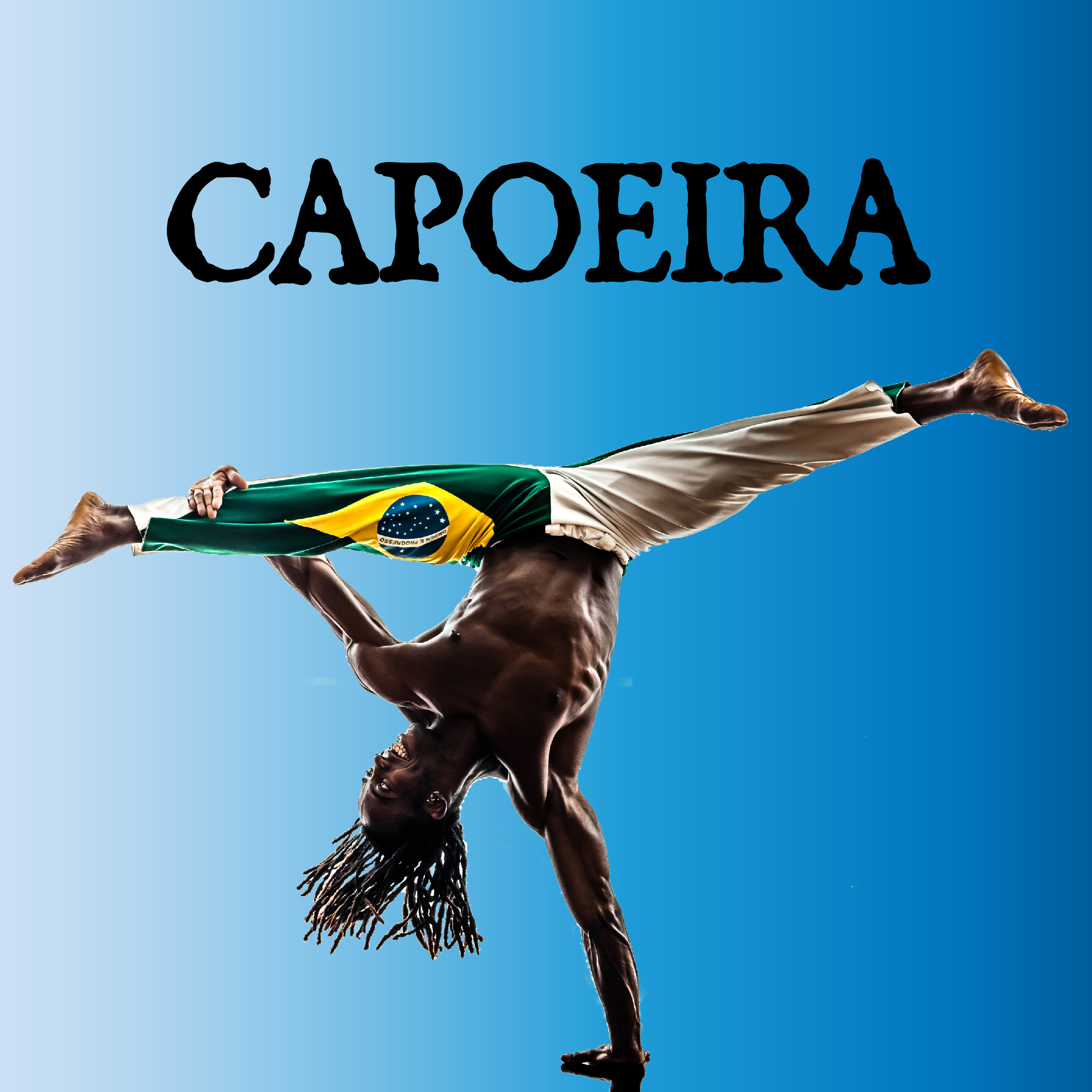 Capoeira Demonstration and Q&A