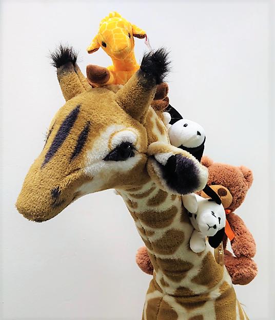 Stuffed Animal Storytime