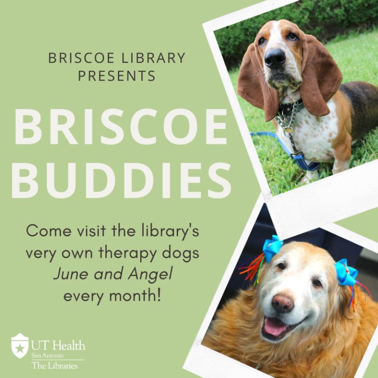 Briscoe Buddies