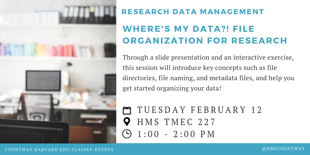 Where's My Data?! File Organization for Research