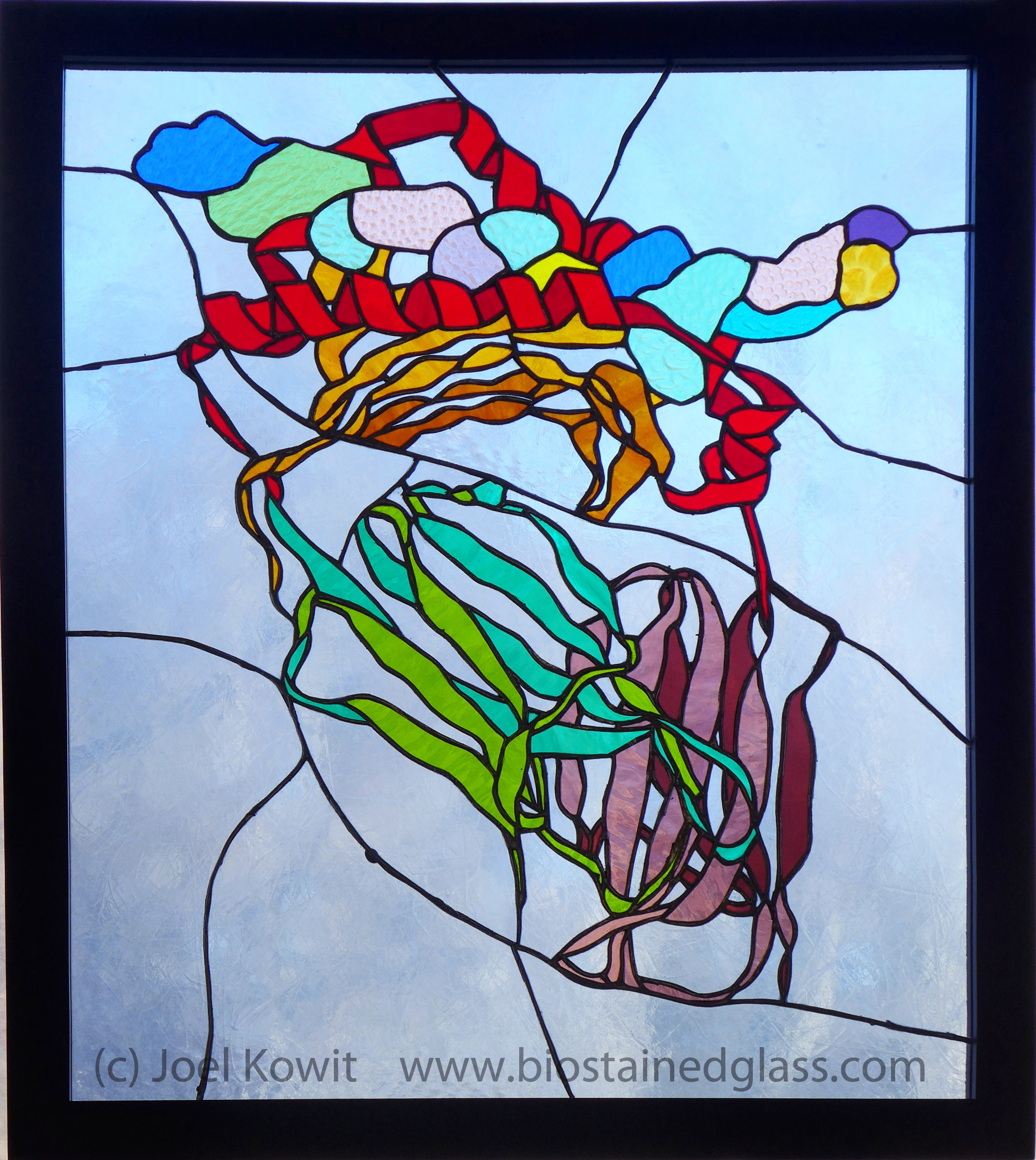 Exhibit, Artist Talk,  and Reception - The Cellular Universe Through Stained Glass: Joel Kowit