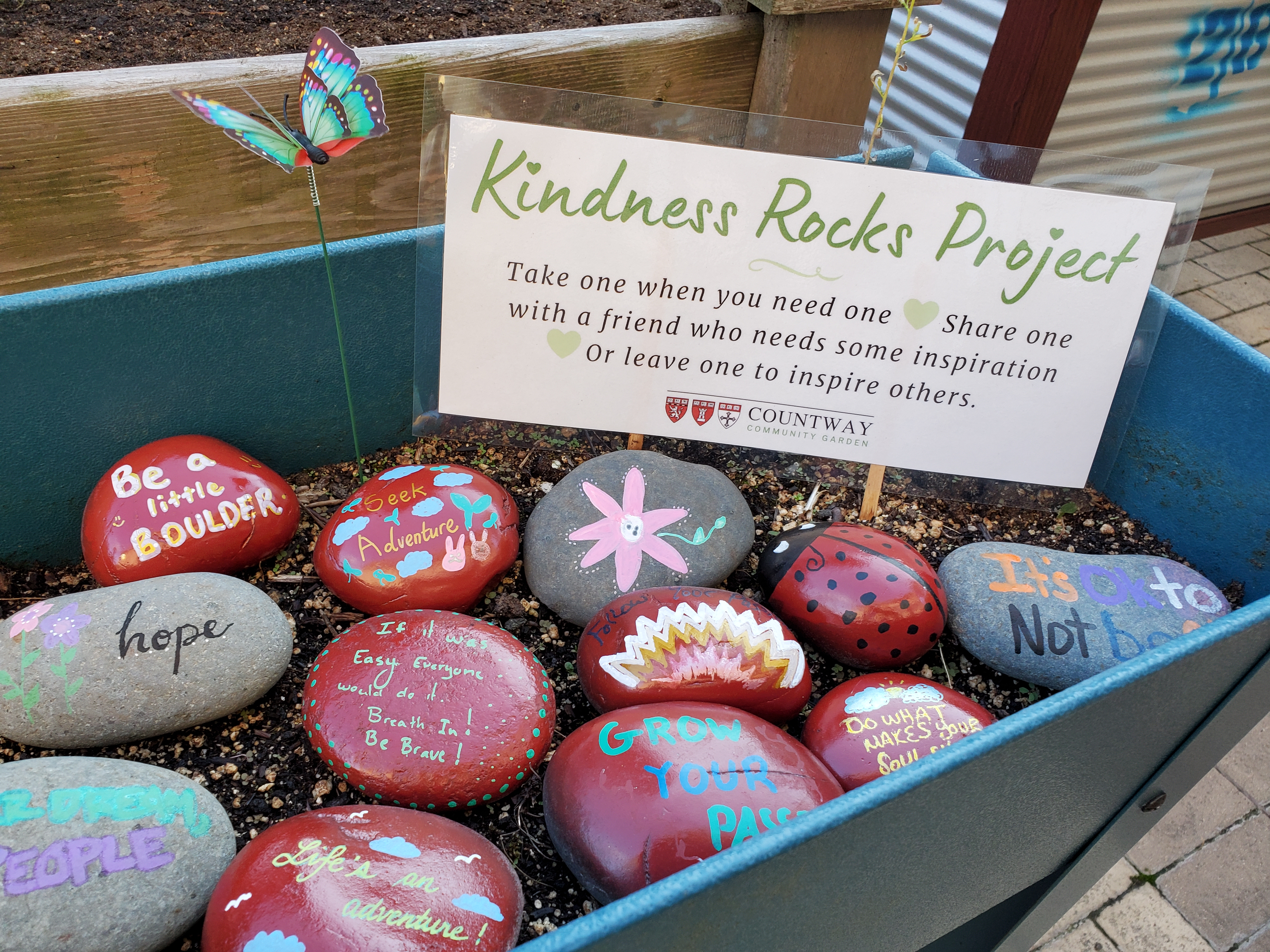 Kindness Rocks Project: Drop-in Rock Painting