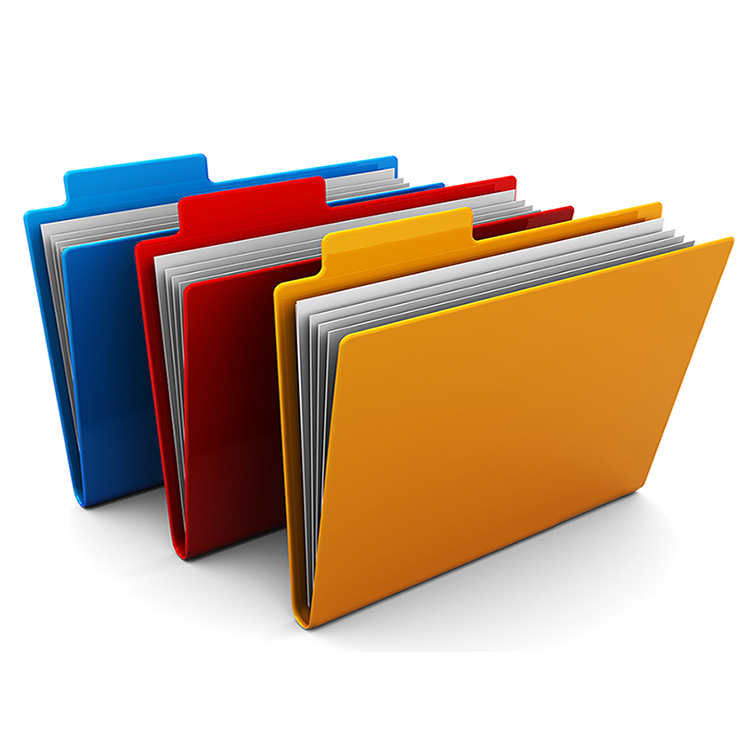 File Management: File Organization with Windows File Explorer