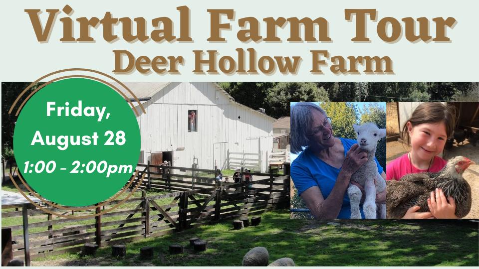 Virtual Farm Tour: Deer Hollow Farm