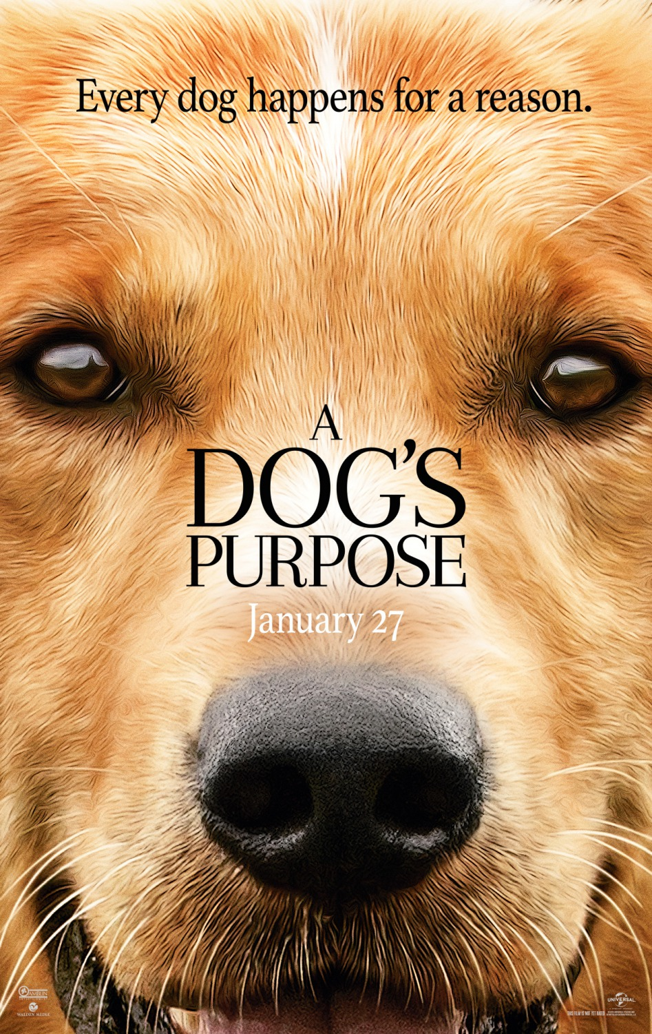 Movie Matinees @ Your Library: A Dog's Purpose