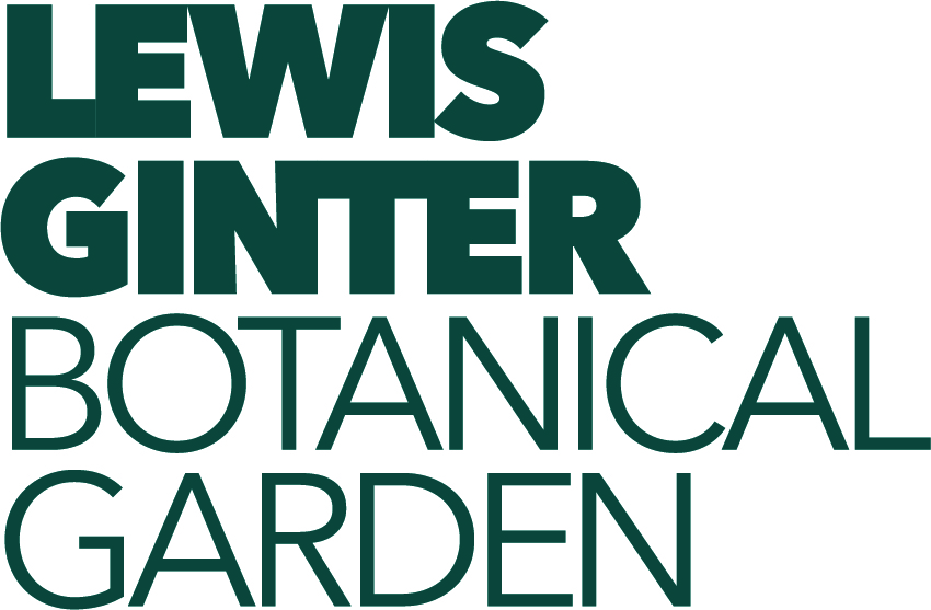 Lewis Ginter Botanical Gardens:  Patterns in Nature