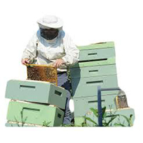 Marion Co Beekeepers' Association Public Presentation
