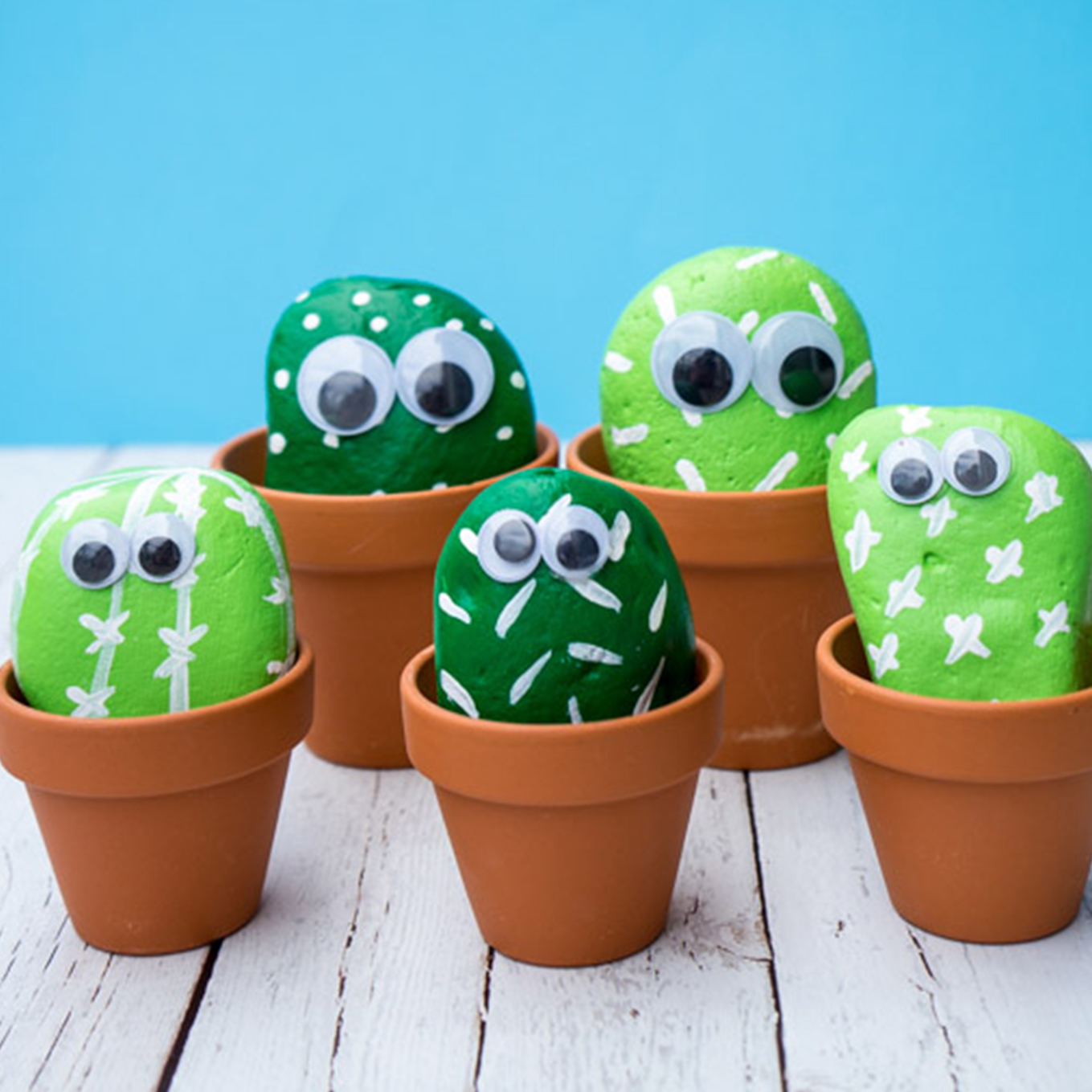 Teen Crafternoon: Cactus Rocks