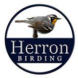 """Beyond the Book"" Book Club Presents: A Birding Adventure with Joey Herron (Online Event)"