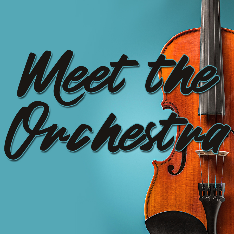 Meet the Orchestra (All Ages)
