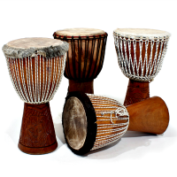 Djembe Drum and Dance Workshop